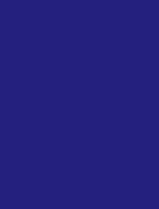 dogstar foundation logo